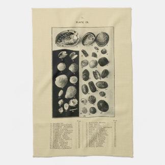 NZ Muscheln - Paua etc. Handtuch