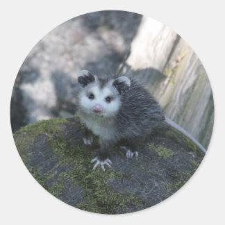 Opossum-Aufkleber Runder Aufkleber