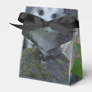 Opossum-Geschenkboxen Geschenkschachtel
