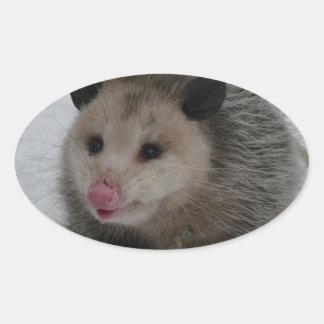 Opossum Ovaler Aufkleber