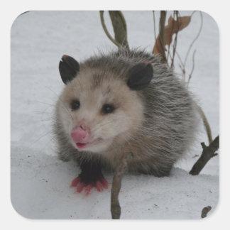 Opossum Quadratischer Aufkleber