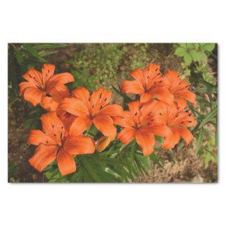 Orange Blumen-Seidenpapier Seidenpapier