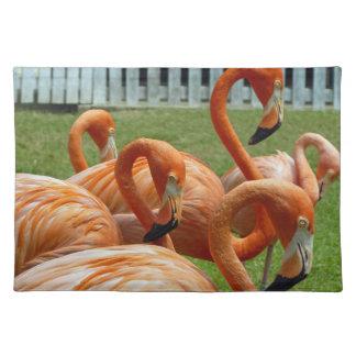 Orange Flamingo-Tischset Tischset