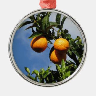 Orange Früchte, die am Baum gegen das Blau hängen Rundes Silberfarbenes Ornament