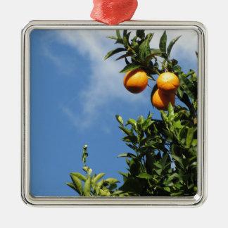 Orange Früchte, die am Baum gegen den Himmel Quadratisches Silberfarbenes Ornament