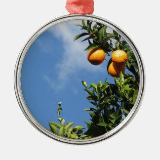 Orange Früchte, die am Baum gegen den Himmel Rundes Silberfarbenes Ornament