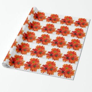 Orange Gänseblümchen Einpackpapier