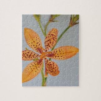 Orange gepunktete Iris genannt eine Puzzle
