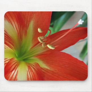 orange Lilie Mousepad