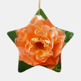 orange Strauchrose mit Knospen, Keramik Ornament