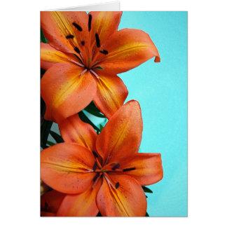 Orange Tigerlilien-Blumen-Grußkarte Karte