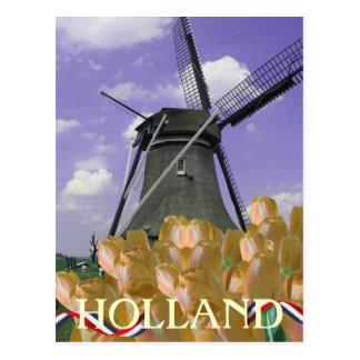 Orange Tulpe-Windmühlen-Kunst-Holland-Postkarte Postkarte