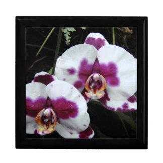Orchideen-Geschenkboxen Große Quadratische Schatulle