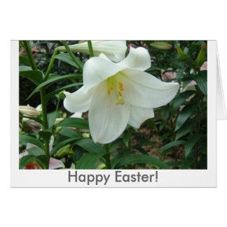 Osterlilie, fröhliche Ostern! Karte