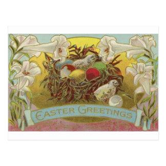 Osterlilien und Küken Postkarte