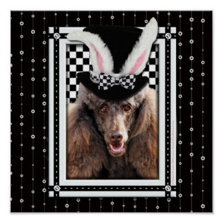 Ostern - etwas Häschen-Lieben Sie - Pudel - Schoko Plakatdrucke