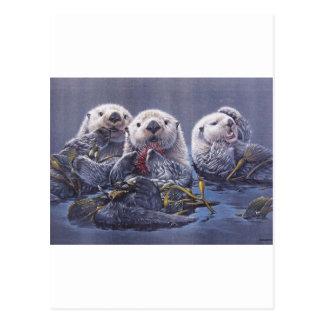 Otter-Trio Postkarte