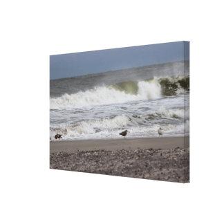 Ozean-Foto Leinwanddruck