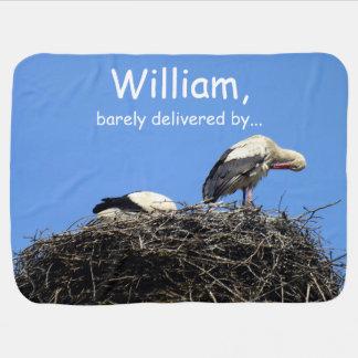 Paare der Störche, die in einem Nest sitzen Puckdecke