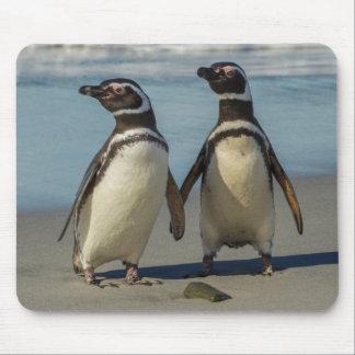 Paare Pinguine auf dem Strand Mauspads