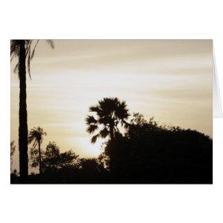 Palme am Sonnenuntergang Karte