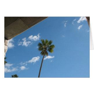 Palme-Himmel Karte