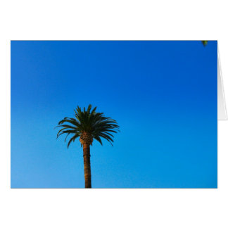 Palme Karte