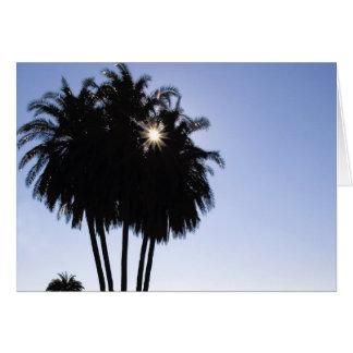 Palmen Karte