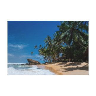 Palmen und blauer Himmel Leinwand Drucke