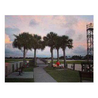 Palmen und Sonnenuntergänge Postkarte