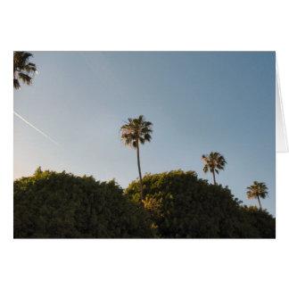 palmtrees karte