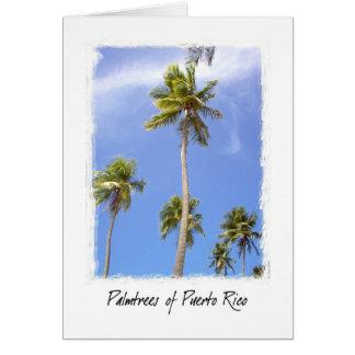 Palmtrees von Puerto Rico Karte