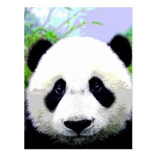 Panda-Bär Postkarten