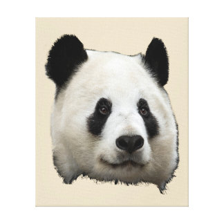 Panda Leinwanddruck