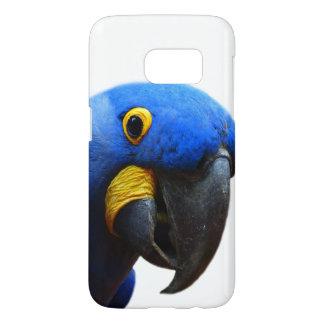 Papagei Macawexotisches tropisches TierFoto