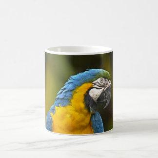 Papagei Tasse