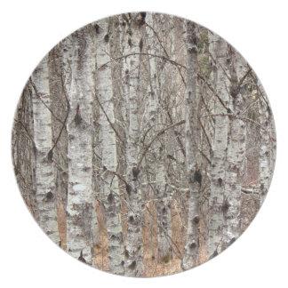Pappel-Waldparzelle Melaminteller