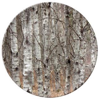 Pappel-Waldparzelle Teller