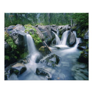 Paradies-Nebenflussflüsse neigt unten sich vom Ber Fotografischer Druck