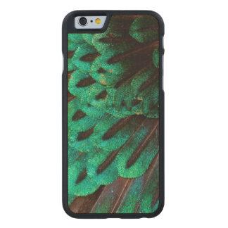 Paradiesvogel Federnahaufnahme Carved® iPhone 6 Hülle Ahorn