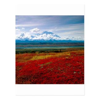 Park-glänzende Farben von Denali Alaska Postkarte