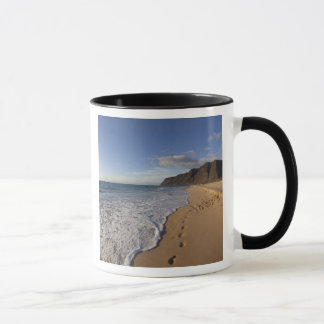 Park USA, Hawaii, Polihale Strand-Staat. Strand Tasse