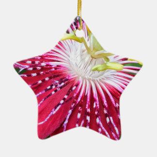 Passionflower Dble-Versah Stern-Verzierung mit Keramik Stern-Ornament