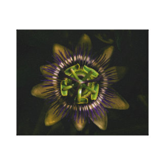 "Passionsblume 10"" x8""/25x20 cm leinwanddruck"