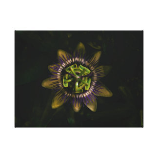 "Passionsblume 24"" x18""/60x45cm leinwanddruck"