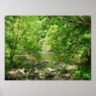 Patapsco Fluss-Ansicht-Maryland-Natur-Fotografie Poster