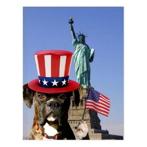 Patriotische Boxerhundepostkarte Postkarten