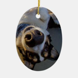 Peinlicher Moment Ovales Keramik Ornament