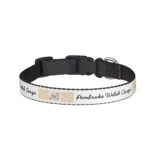 Pembroke-WaliserCorgi Haustierhalsband