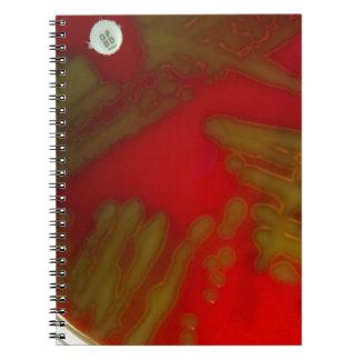 Penumonia Bakterien Notizbücher